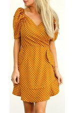 Nancy Dot Dress - Carry