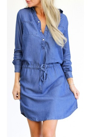 Vega Denim Dress